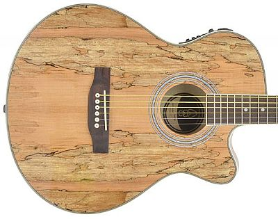 chord n5sm native spalted maple electro acoustic guitar speed music. Black Bedroom Furniture Sets. Home Design Ideas
