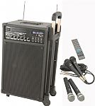 QTX Sound PPA74 Portable DVD Karaoke PA System with Microphones